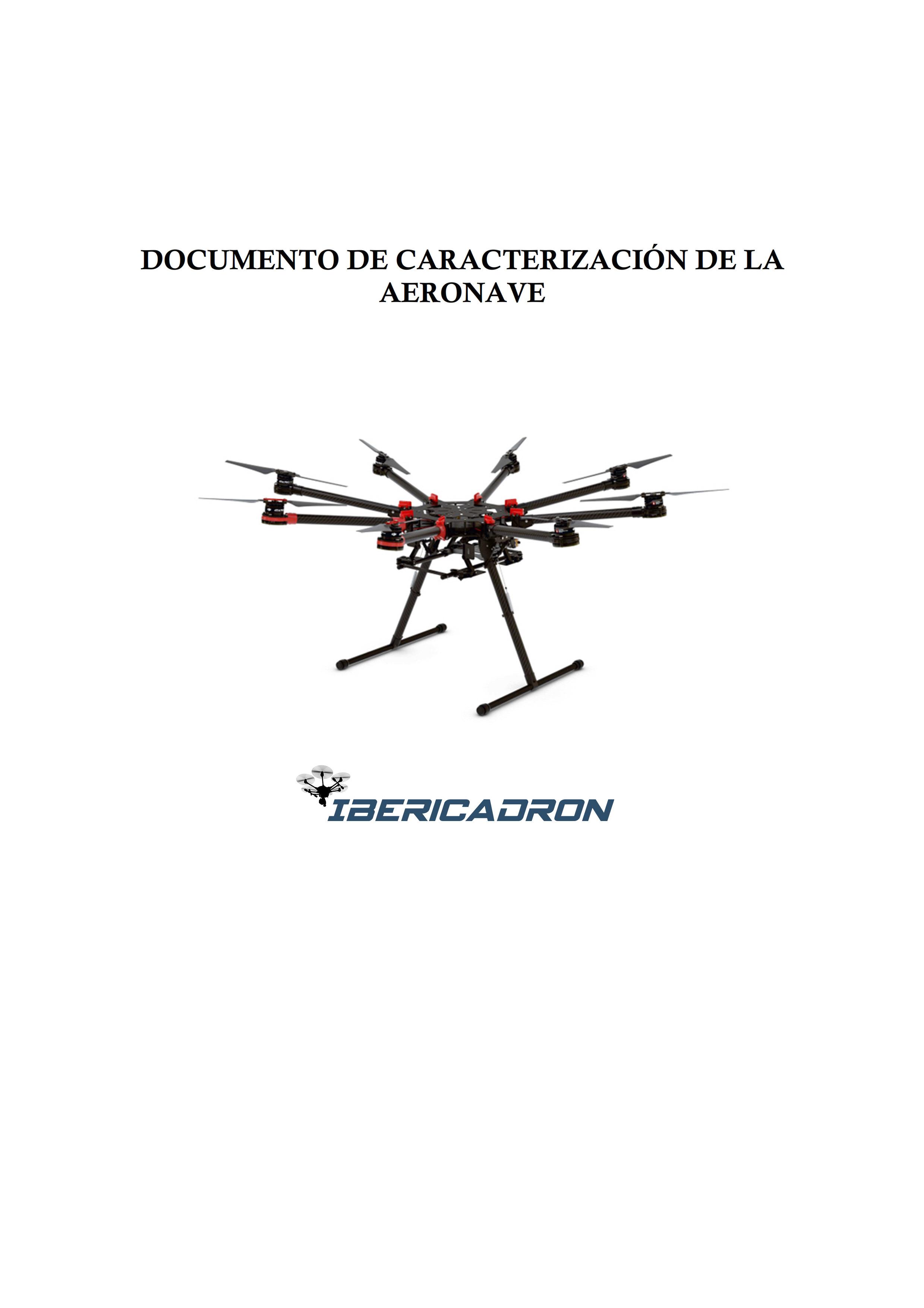 Documento caracterización DJI S1000