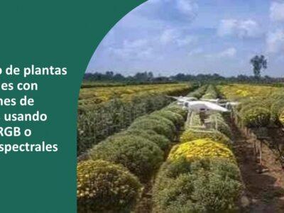 curso Conteo de plantas con dron